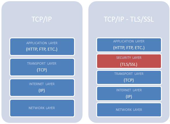 network_models